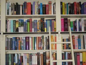 Biblioteka w… naszym domu